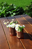 Decorative daisies in copper cans Stock Image