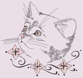Decorative design with cat Stock Photos