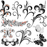 Decorative design elements Royalty Free Stock Photo