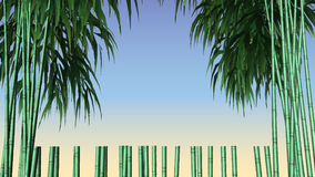 Decorative design Vector frame bamboo vector illustration