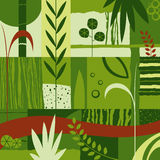 Decorative Design With Plants Stock Photos