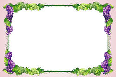 Decorative Diet Frame With Grapes Royalty Free Stock Photography