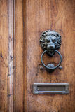 Decorative door knocker Stock Photography