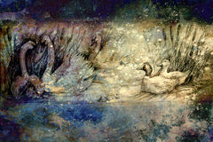 Decorative drawing of swans and wild ducks swimming at pond with reeds.  Stock Photo