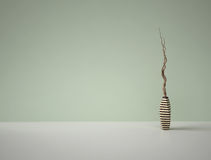 Decorative dry branches in striped vase on green background Stock Photography