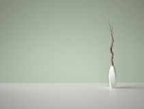 Decorative dry branches in white vase on green background Royalty Free Stock Photo