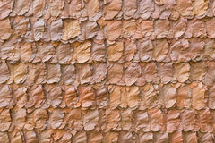 Decorative dry leaves on traditional wall Royalty Free Stock Image