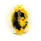 Decorative easter chick Stock Photos