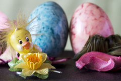 Decorative  easter chick with eggs Royalty Free Stock Photography