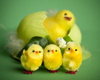Decorative Easter chickens Stock Photography