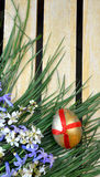 Decorative egg and flowers Stock Photography