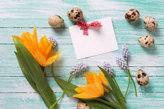 Decorative Easter eggs, flowers and empty tag on  turquoise wood Royalty Free Stock Image