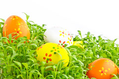 Decorative easter eggs in a grass Royalty Free Stock Image
