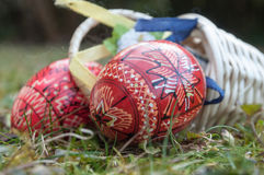 Decorative easter eggs in outdoor in the grass Royalty Free Stock Image