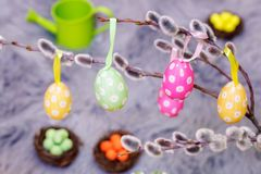 Decorative Easter eggs on pussy willow. In backgrounds Stock Photo