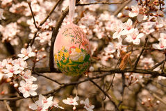 Decorative egg on the tree Royalty Free Stock Photography