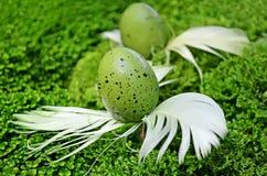Decorative eggs Stock Photography