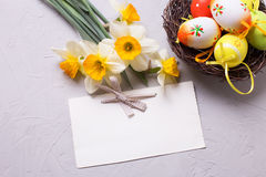 Decorative eggs  in nest and yellow daffodils or narcissus flowe Stock Images