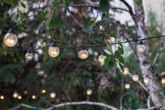 Decorative electric festoon of lighting bulbs hanging on tree br. Decorative electric festoon of lighting bulbs hanging among tree branches outdoor stock images