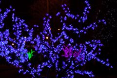 Decorative electrics tree bulbs blue flowers shines at night. Decorative tree of blue electrics small bulbs flowers shines on New Year Eve at municipality stock images