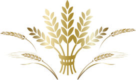Free Decorative Element Gold Ripe Wheat Ears Composition. Royalty Free Stock Photos - 98005768