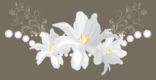 Decorative element with stasses and white flowers Royalty Free Stock Image