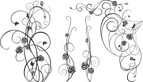 Decorative  elements with black roses Royalty Free Stock Images