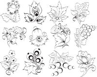 Decorative. Elements Vector illustration flower Stock Images