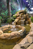 Decorative falls and reservoir in a winter garden Stock Images