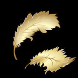 Decorative Feather Royalty Free Stock Image