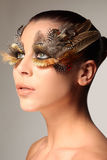 Decorative feather make-up like the wing of a bird Royalty Free Stock Photos