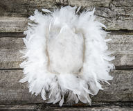 Decorative feather pillow Stock Photo