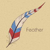 Decorative feather Stock Photos