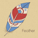 Decorative feather Stock Images