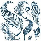 Decorative feathers set Stock Images