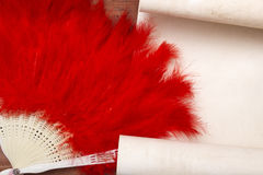 Decorative female fan of red feathers Stock Image