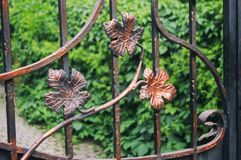 Decorative finish of metal fencing with forged elements. Incoming leaves.  stock image