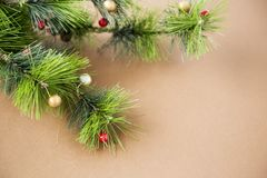 DECORATIVE FIR BRANCH ON BROWN BACKGROUND stock images