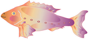 Decorative fish. Isolated decorative fish vector image Royalty Free Stock Photo
