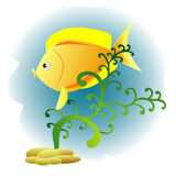 Decorative fish. Background with decorative fish and plant Royalty Free Stock Images