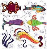 Decorative fishes. Set of marine decorative graphic. Different colored fish, filigree and  swirl Royalty Free Stock Image