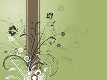 Decorative floral background Stock Images