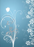 Decorative floral background Stock Photos