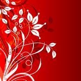 Decorative floral background,  Royalty Free Stock Photos