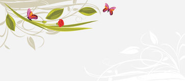 Decorative floral background with butterflies Stock Photography