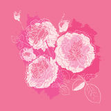 Decorative floral background. Royalty Free Stock Photo