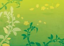 Decorative floral background illustration Stock Image