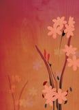 Decorative floral background illustration Stock Photos