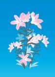 Decorative floral background illustration. Decorative floral background vector illustration against a blue background Stock Photography