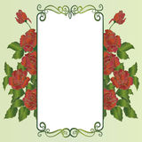 Decorative floral background with roses. Floral decorative background with red roses vector illustration